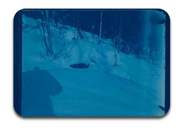 salah satu hasil cetak foto dengan tehnik Cyanotype