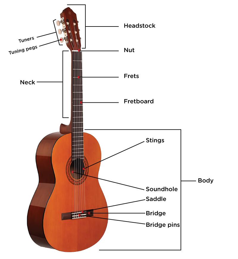 Anatomi gitar